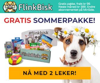 FlinkBisk 2